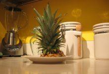 Photo of کاشت آناناس در منزل + عکس