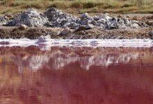 Photo of دریاچه صورتی مهارلو