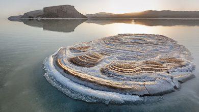 Photo of دریاچه ارومیه از دریچه دوربین بردیا سعادت