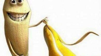 Photo of عکس های خندهدار از میوه و سبزیجات