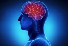Photo of چه وقت مغز آقایان بهتر کار میکند؟