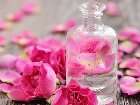 گل محمدی,گلاب,خواص درمانی گل محمدی