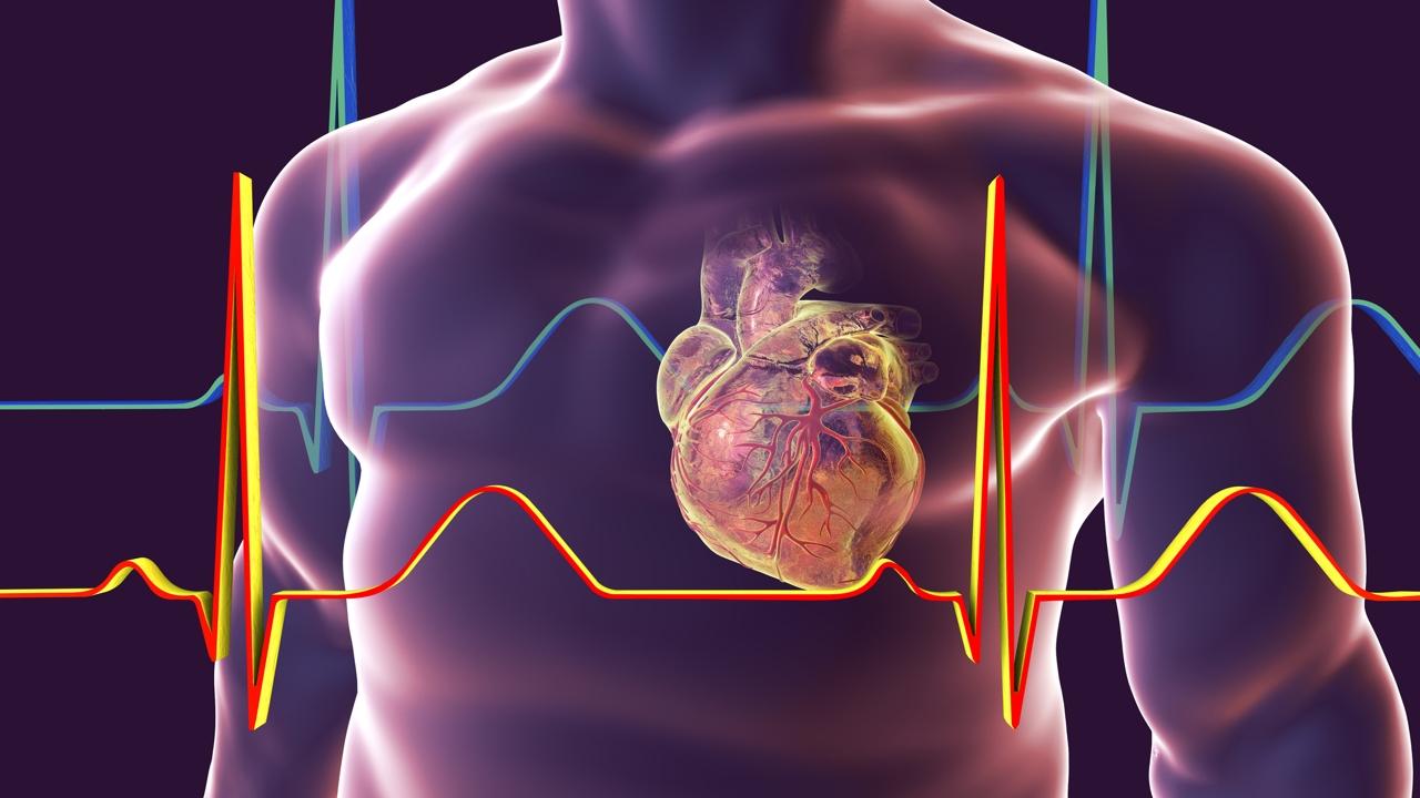 عوامل بزرگ شدن قلب