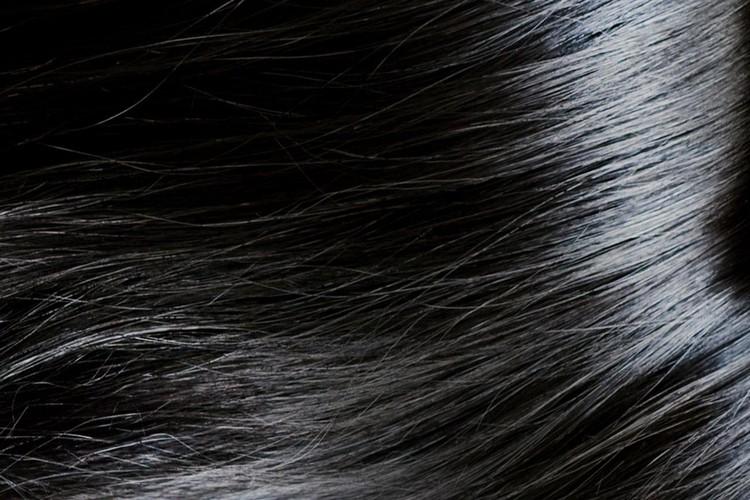 چرا موها چرب میشوند؟