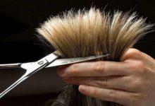 Photo of آیا کوتاه کردن مو باعث رفع موخوره میشود؟
