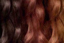 Photo of تغییر بافت و رنگ مو به مرور زمان