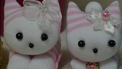 Photo of ساخت گربه جورابی