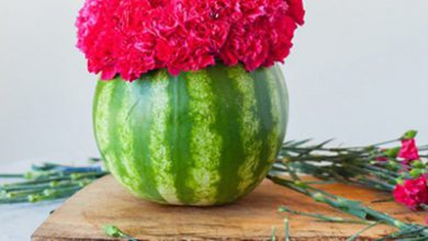 Photo of گلدانی از جنس هندوانه !