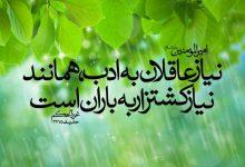 Photo of نیاز عاقلان به ادب