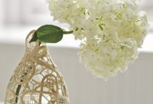 Photo of تزیین ساده بطری برای نگهداری شاخههای گل