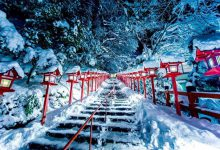 Photo of کیوتو سرزمین عجایب در فصل زمستان