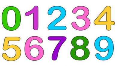 Photo of کلمات انگلیسی با موضوع اعداد
