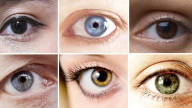 Photo of چشمها از وضع سلامت شما گزارش میدهند