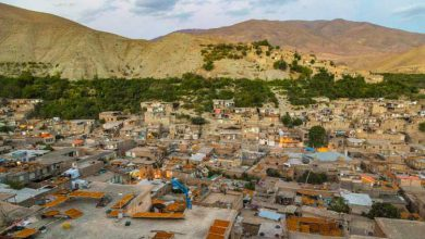 Photo of شهر خرو پایتخت آلوی ایران