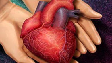 Photo of پیوند قلب از کجا و چگونه؟