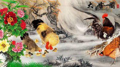 Photo of تصاویر نقاشی شده از مرغ و خروس شماره ۲