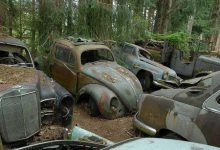 Photo of قبرستان خودروهای قدیمی در جنگل های بلژیک