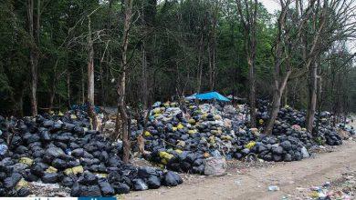 Photo of باقی گذاشتن زبالهها در محیط زیست