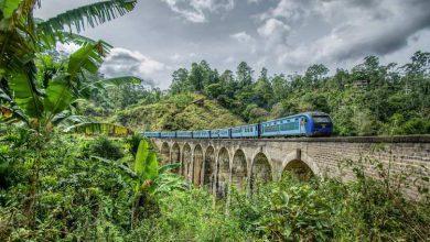 Photo of حرکت قطار ها در میان طبیعت