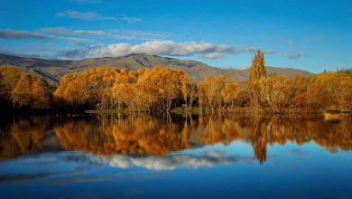 Photo of عکس های آرامش دهنده از طبیعت