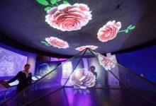 Photo of موزهای با معماری از گلهای رز