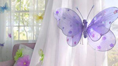 Photo of پروانه های جورابی