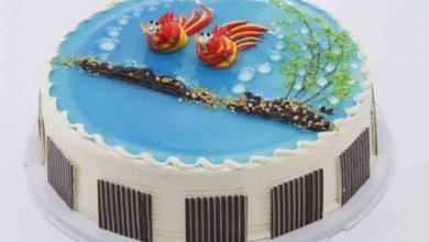 Photo of کیک اسفنجی تزیین شده با ژله