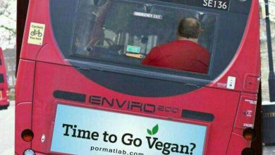 Photo of عواقب اضافه وزن بر روی اتوبوس