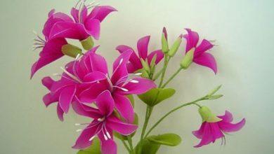 Photo of گل های زیبایی که با جوراب ساخته میشوند