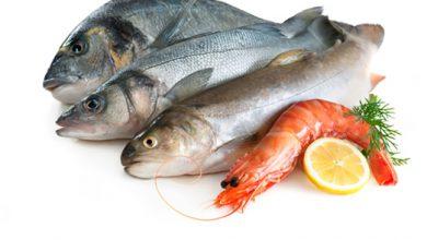 Photo of نکاتی درباره گوشت ماهی