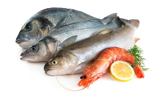 نکاتی درباره گوشت ماهی