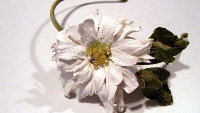 Photo of مدلهایی از گل های چرمی