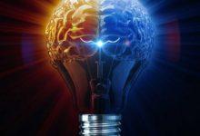 Photo of مغز من از چه بخش هایی تشکیل شده است؟ قسمت دوم