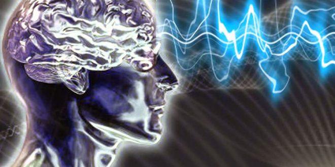 Photo of مغز من از چه بخش هایی تشکیل شده است؟ قسمت اول