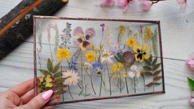 Photo of قابهای زیبای شیشهای با گل و گیاهان خشک شده