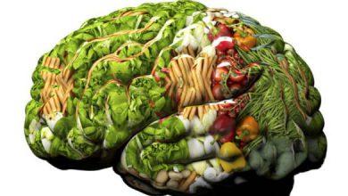 Photo of کاهش تشنج با رژیم غذایی