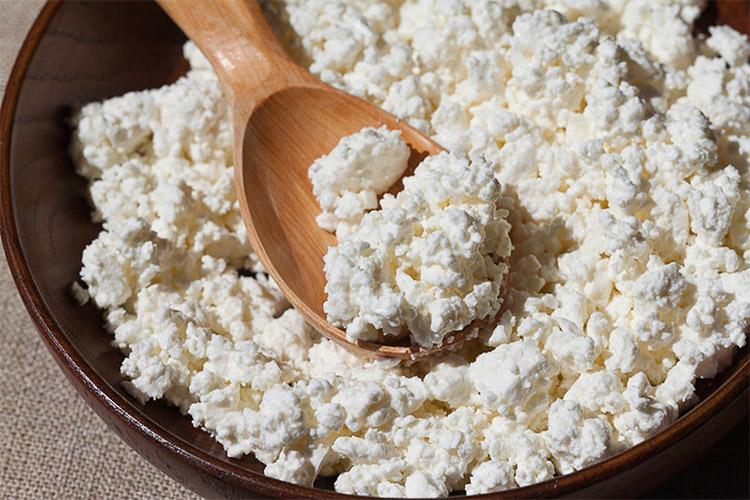 پنیر بز و خواص آن