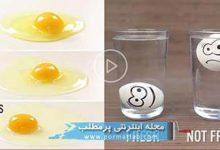 Photo of ۲۸ ترفند خلاقاته با تخم مرغ
