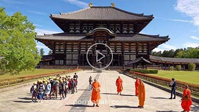 Photo of گردشگری نارا پایتخت قدیم ژاپن