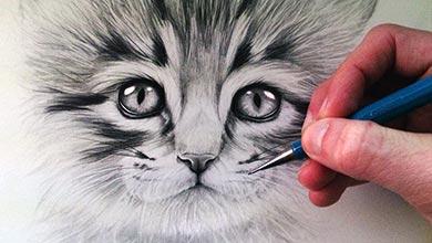 Photo of آموزش نقاشی بچه گربه با اتد