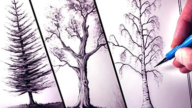 Photo of نقاشی سه نوع درخت با مداد سیاه