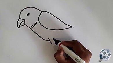 Photo of نقاشی پرنده با ماژیک سیاه