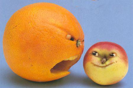 نحوه تزیین پرتقال,تصاویر تزیین پرتقال,تزیین پرتقال